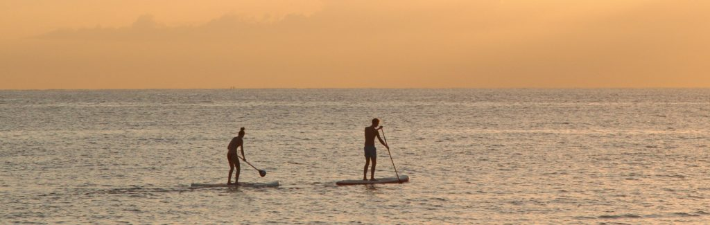 Man And Woman Paddle Boarding At Sea 2885904 (2)